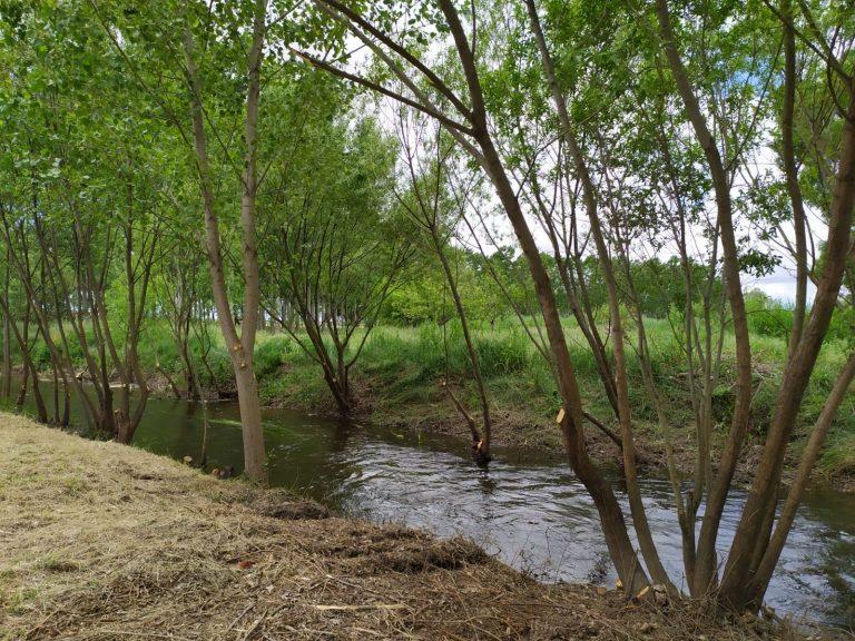 El Gobierno invierte 108.500 euros en lo que va de año en actuaciones de mejora de cauces en la provincia de Salamanca