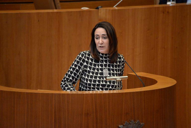 El PSOE acusa a la Junta de carecer de hoja de ruta en materia de política fiscal y presupuestaria y de conformarse únicamente con pedir al Gobierno