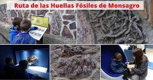 El PSOE consigue que la Junta difunda y financie el Centro de Interpretación de los Fósiles en la localidad salmantina de Monsagro